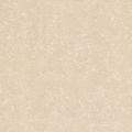 Gạch lát sàn Granit TS2 612